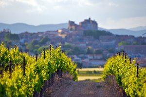 exportations françaises de vins